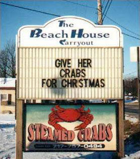 Funny Picture - Great Christmas Gift