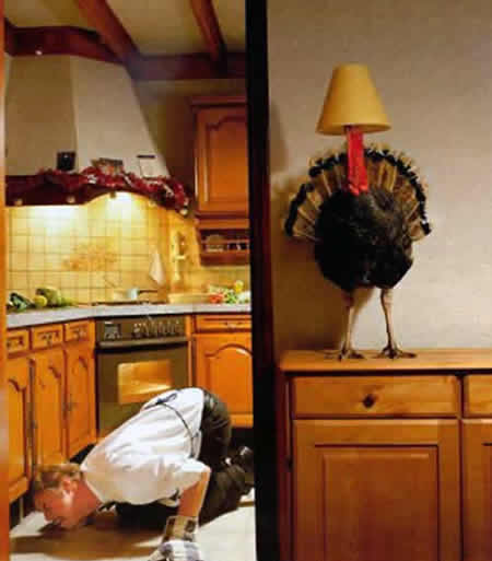 Funny Picture - Christmas Dinner Recipes