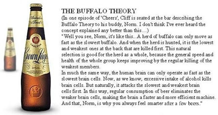 Funny Picture - The Buffalo Theory